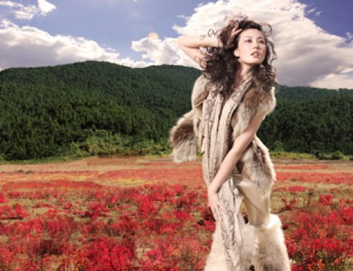 Hong Kong International Fur and Fashion Fair  15-18 February 2019